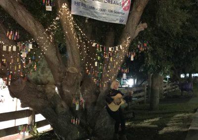Tree night singer