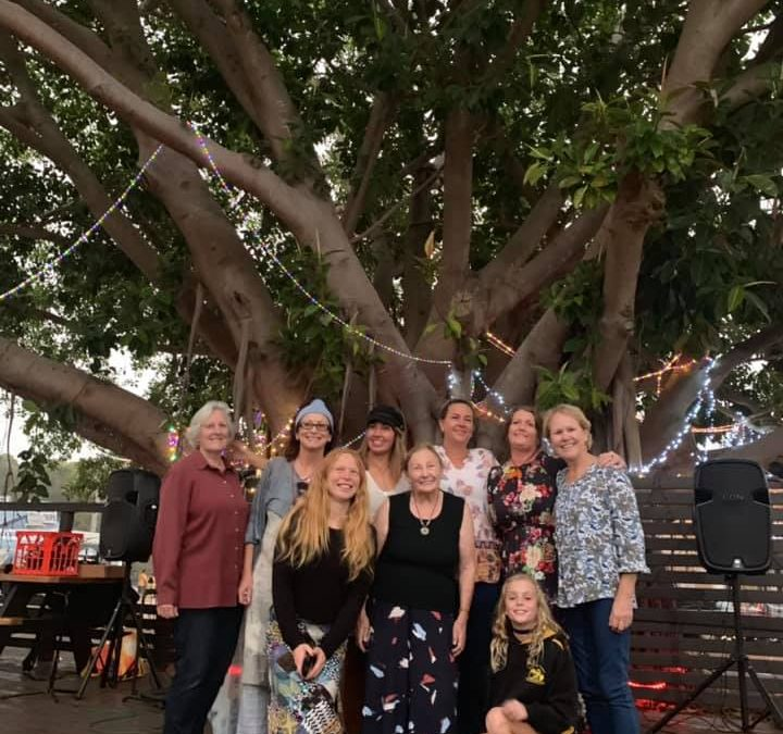 Tree of Dreams lights up at Budgewoi